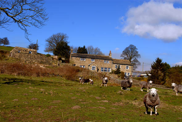 Farmaround, the Yorkshire